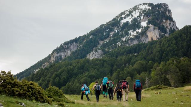 Alps–1