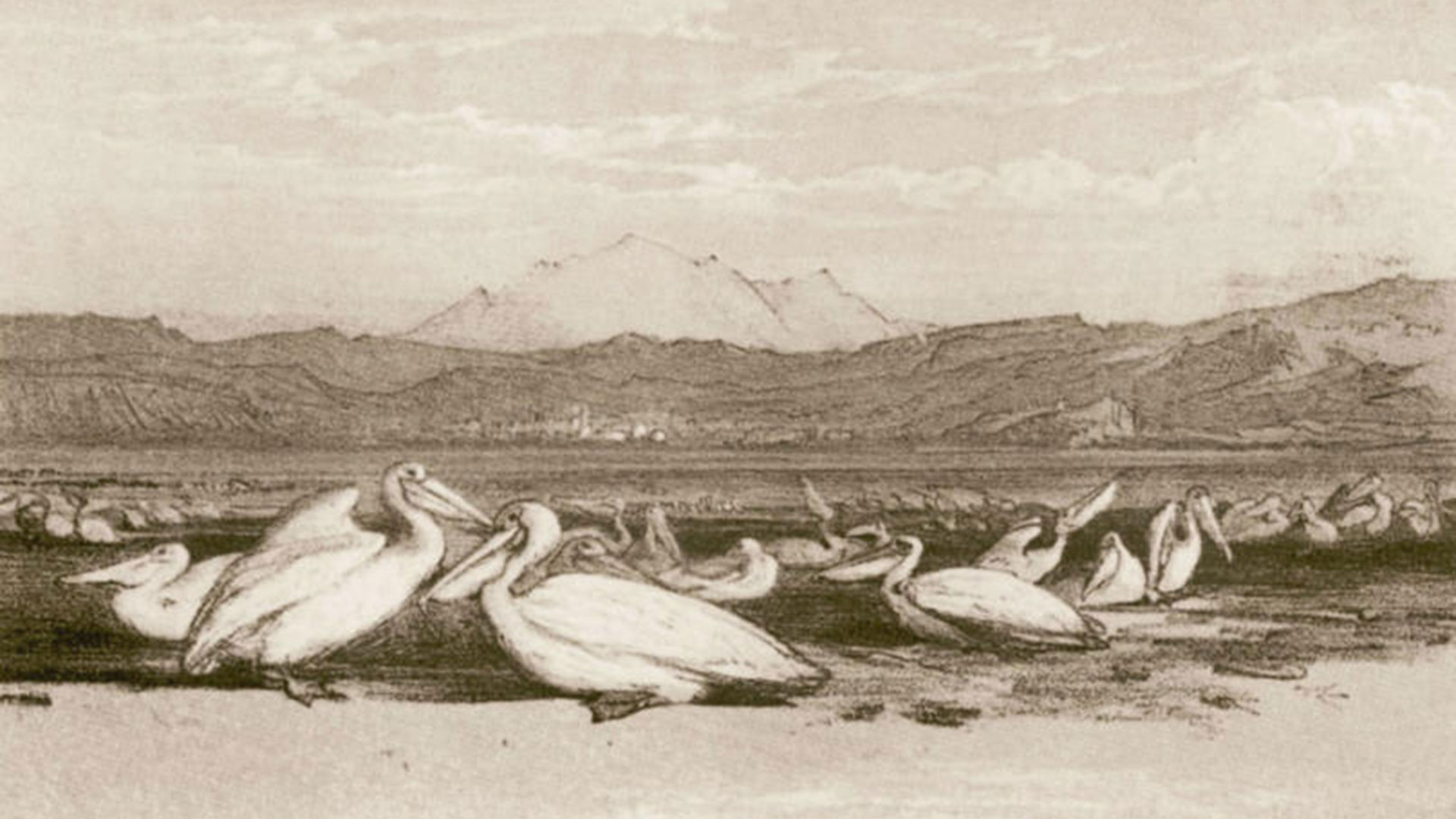Lagoon-of-Zvernec-Vlora-7