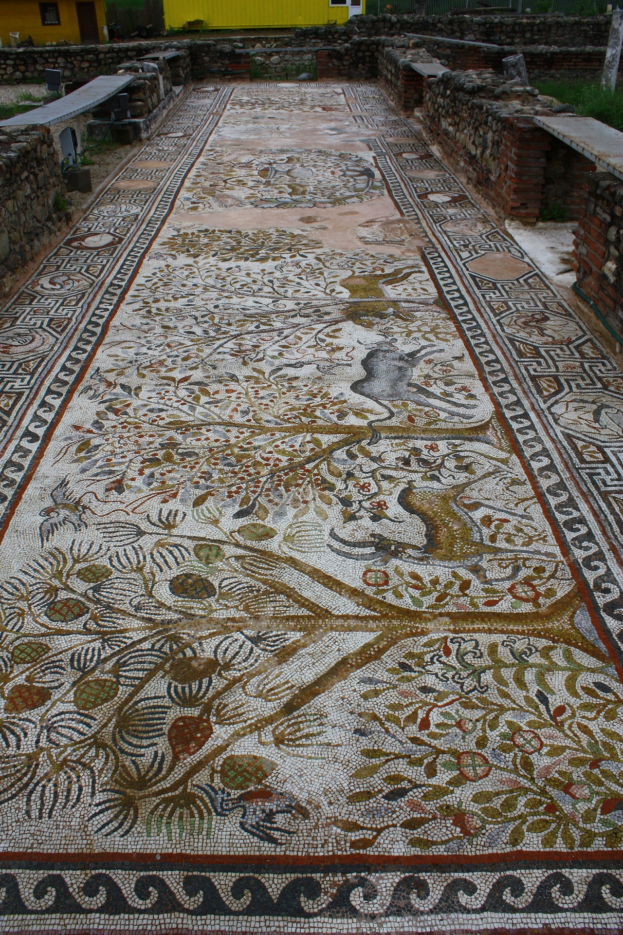 Mosaics in Ancient city of Heraclea-3